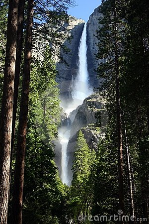 Yosemite Falls and Forest