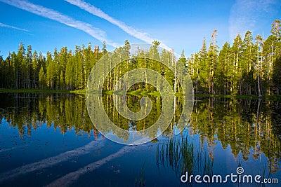 Yosemite Lake Reflection