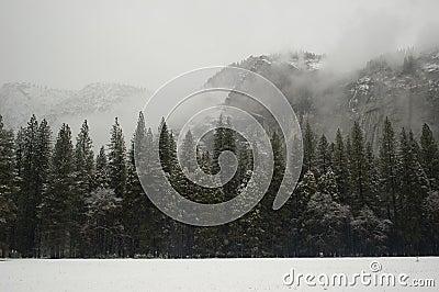 Yosemite Walls in  Winter