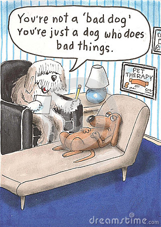 You re not a bad dog you do bad things
