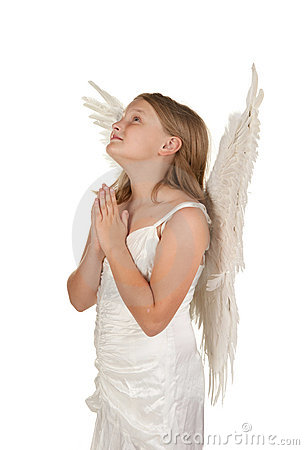 Young angel praying on white background