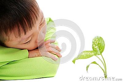 Young asian boy watching green plants grow