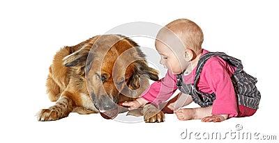 Young baby caressing a faithful pet dog