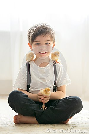 Free Young Beautiful Prechool Boy, Playing With Little Newborn Chick Royalty Free Stock Photo - 111766905