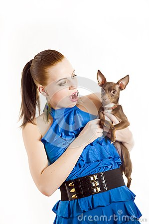 Young beautiful woman holding toy terrier dog