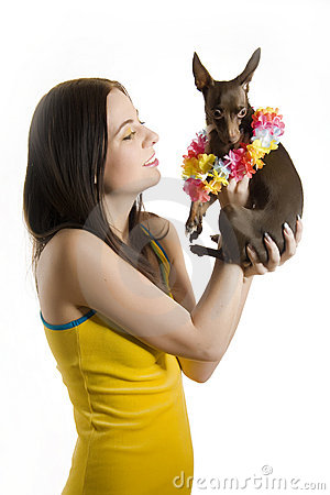 Young beautiful woman with little toy terrier dog
