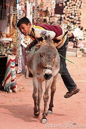 Young Bedouin boy climbing on his donkey Editorial Image