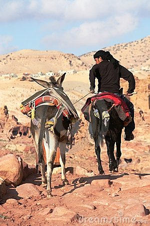 Young Bedouin riding donkey Editorial Stock Photo