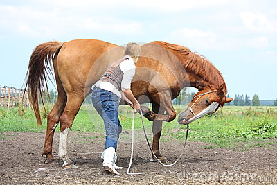 Young blonde woman asking chestnut horse to bow