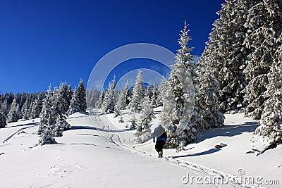 Young boy climbing during winter