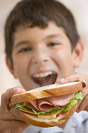Free Young Boy Eating Sandwich Royalty Free Stock Photos - 5938688