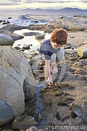 Young boy exploring on the beach