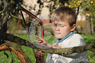 Young boy with handsaw