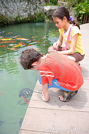 Young boy and his sister admiring a young turtle