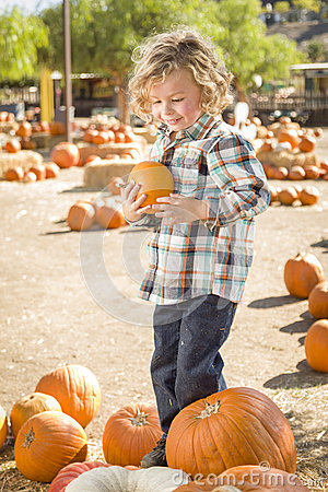 Young Boy Holding His Pumpkin at a Pumpkin Patch