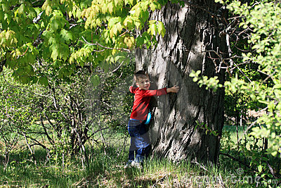 Young Boy Hugging Tree