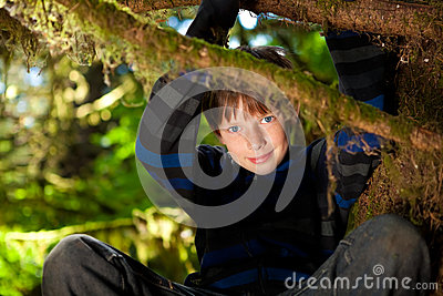 Young boy sitting in a tree smiling