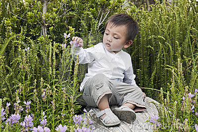 Young boy studies nature