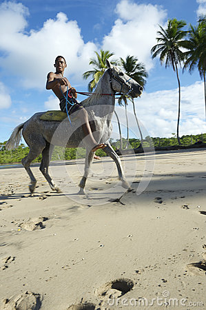 Young Brazilian Riding Horse Bahia Beach Brazil Editorial Photo