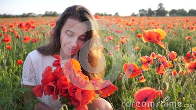 Young brunette woman in white dress stands in the middle of the field of poppies. Charming lady with incredible smile stock footage