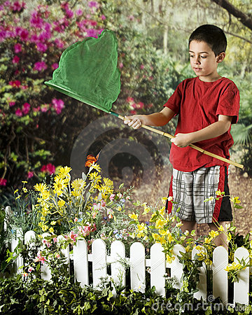 Young Butterfly Catcher