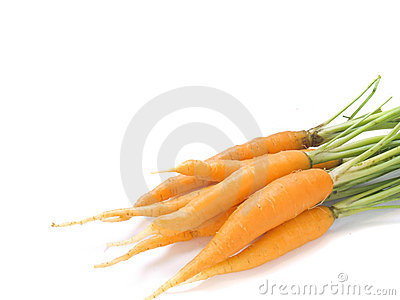 Young carrot isolated