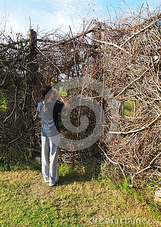 Birdwatching activity, kid at nature hide