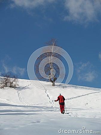 Young climber walking