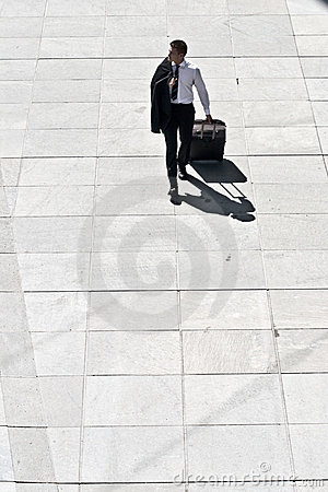Young Corporate Man With Luggage