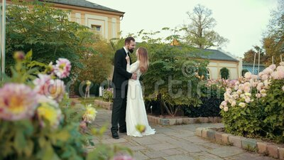 Young couple of newlyweds in love embrace. Groom kisses bride. Young couple of newlyweds in love embrace. Groom with beard black suit kisses bride in white stock video footage