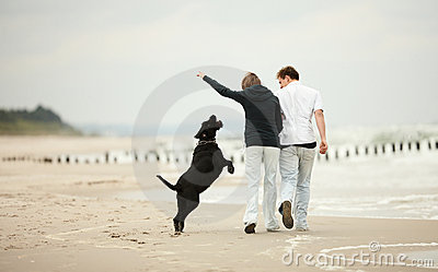 Young couple playing on beach with dog