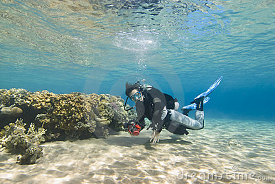 Young female diver in clear shallow water.