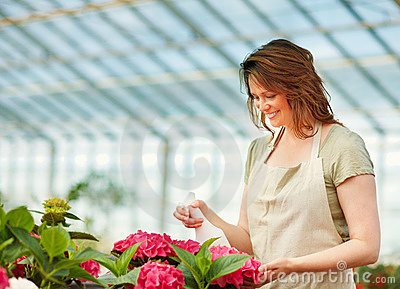 Young female at a greenhouse watering the flowers