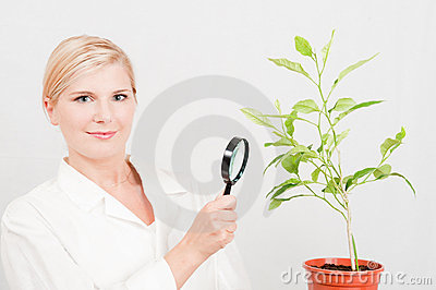 Young female scientist botanic with green plant
