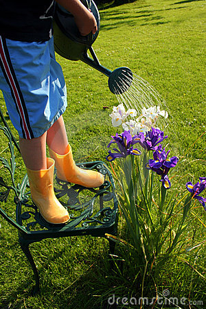 Free Young Gardener Royalty Free Stock Photography - 876937