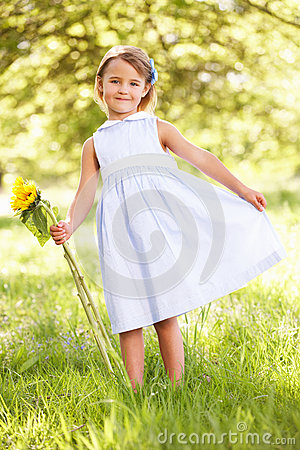 Young Girl In Field Holding Sunflower