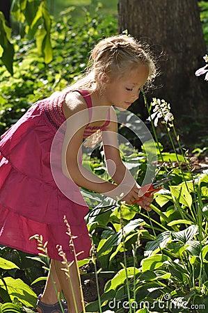 Free Young Girl Gardening Royalty Free Stock Photos - 11080828