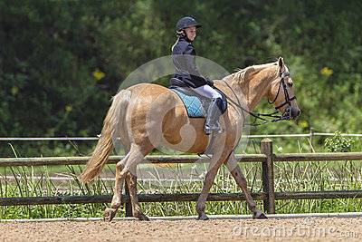 Young Girl Horse Equestrian Editorial Stock Image