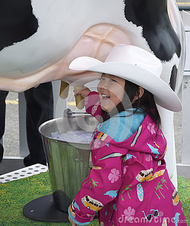 Young Girl Milking a Cow Editorial Stock Photo