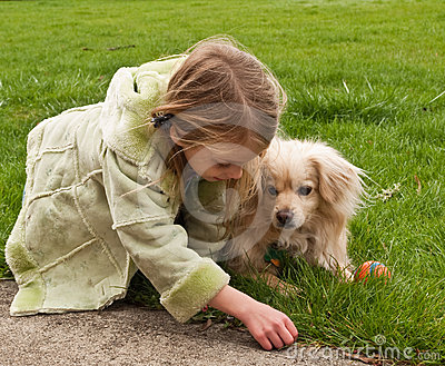 Young girl playing with a little dog