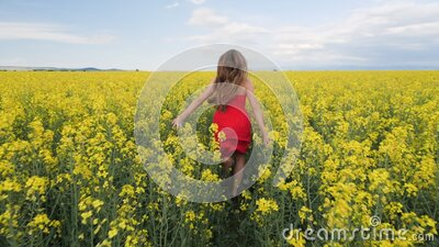 Young girl running through canola field - camera follow stock footage