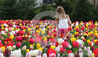 Young Girl and Tulips Editorial Photography