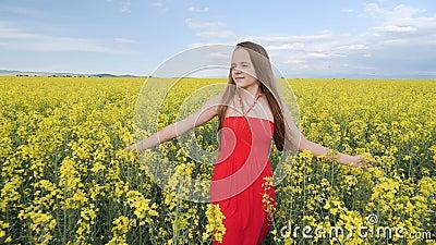 Young girl walking through canola field facing camera stock video footage
