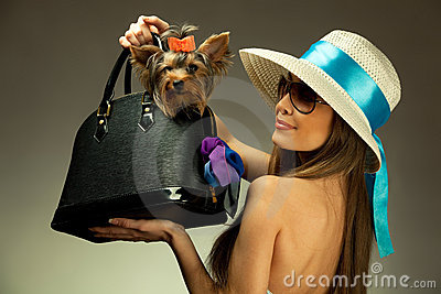 Young glamor woman with Yorkshire Terrier