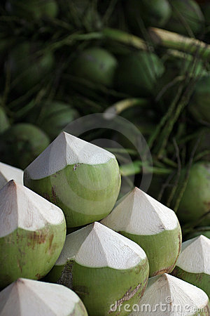 Young Green Coconuts