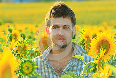 Young handsome man in the sunflower field