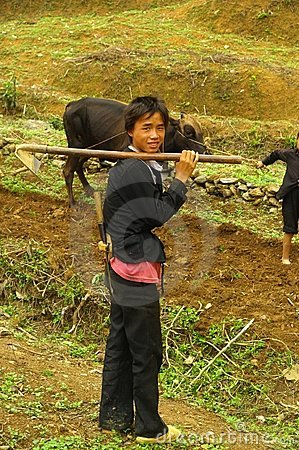 Young Hmong White