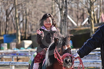 A young horse rider
