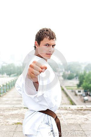 Free Young Karate Master Stock Photos - 28315763