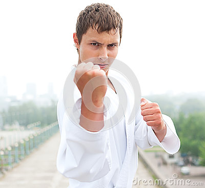 Free Young Karate Master Stock Image - 28315771